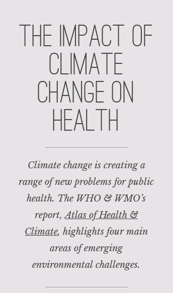 Under the Weather | The Impact of Climate Change on Human Health  Web Design