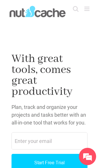 Nutcache, project management tool  Web Design
