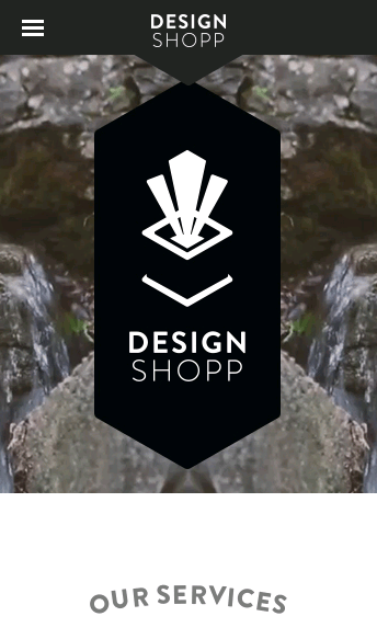 Design Shopp  Web Design