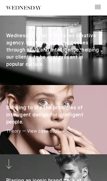 Wednesday Agency   Web Design