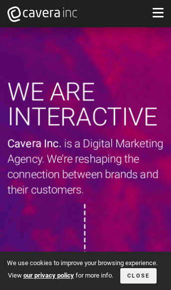 Cavera Inc  Web Design