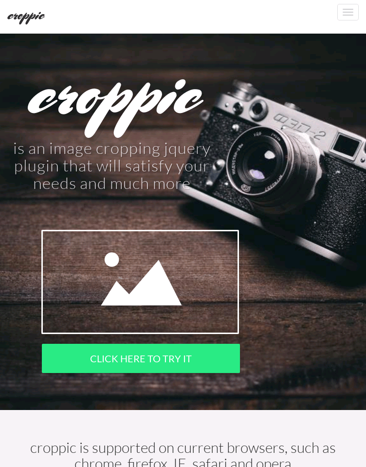croppic  Web Design