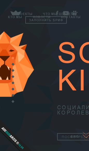 Social King.   Web Design