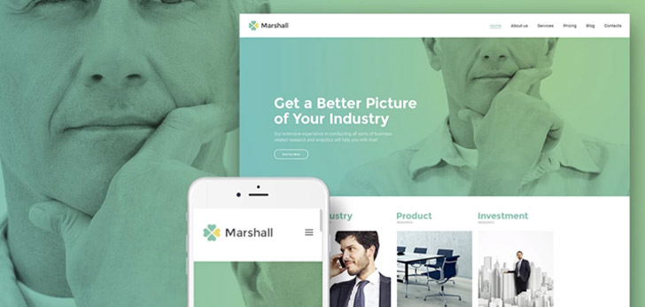 WP Theme Marshal Visit Website