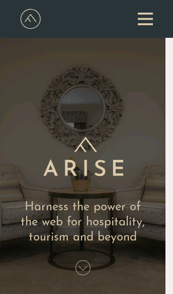 Arise Digital Marketing Agency UK  Web Design