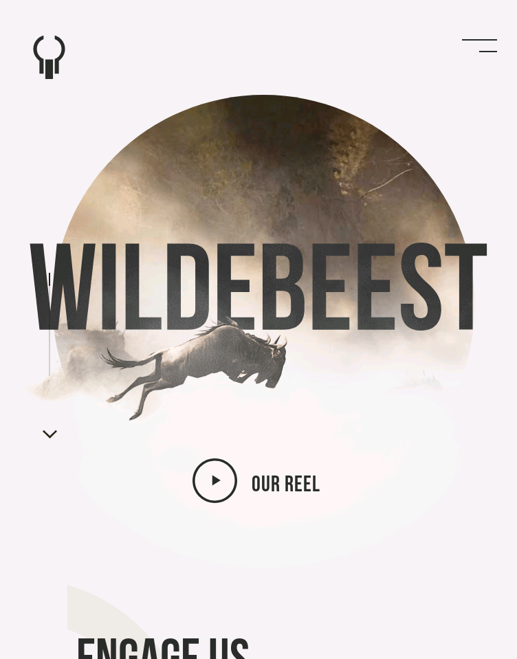 Wildebeest  Web Design