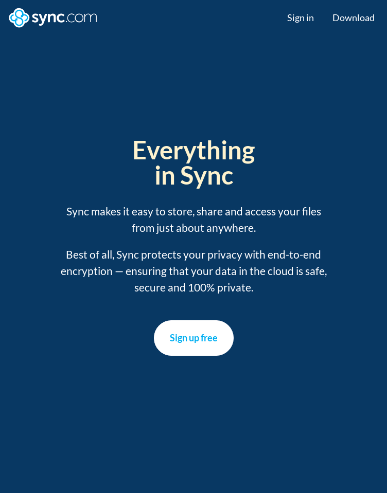 Sync Secure Cloud Storage  Web Design