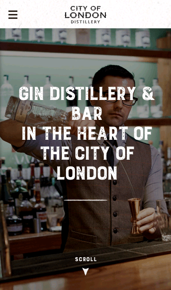 London Gin Distillery  Web Design