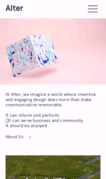 Alter  Web Design