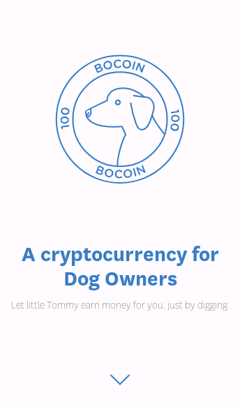 Bocoin  Web Design