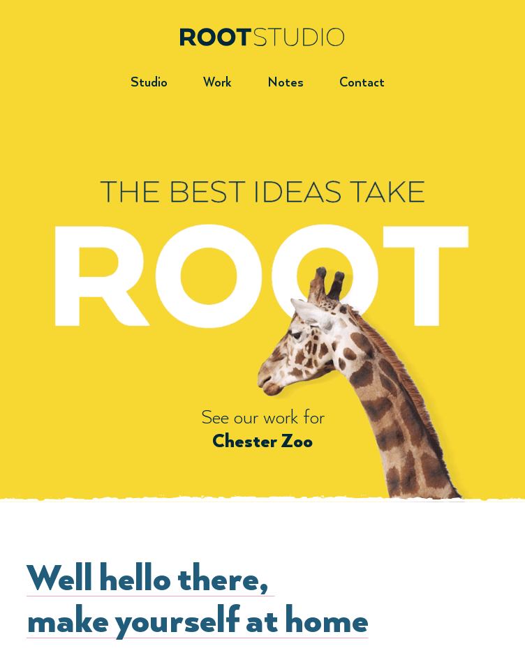 Root Studio Graphic Design  Web Design