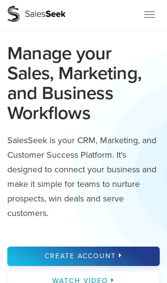 SalesSeek  Web Design