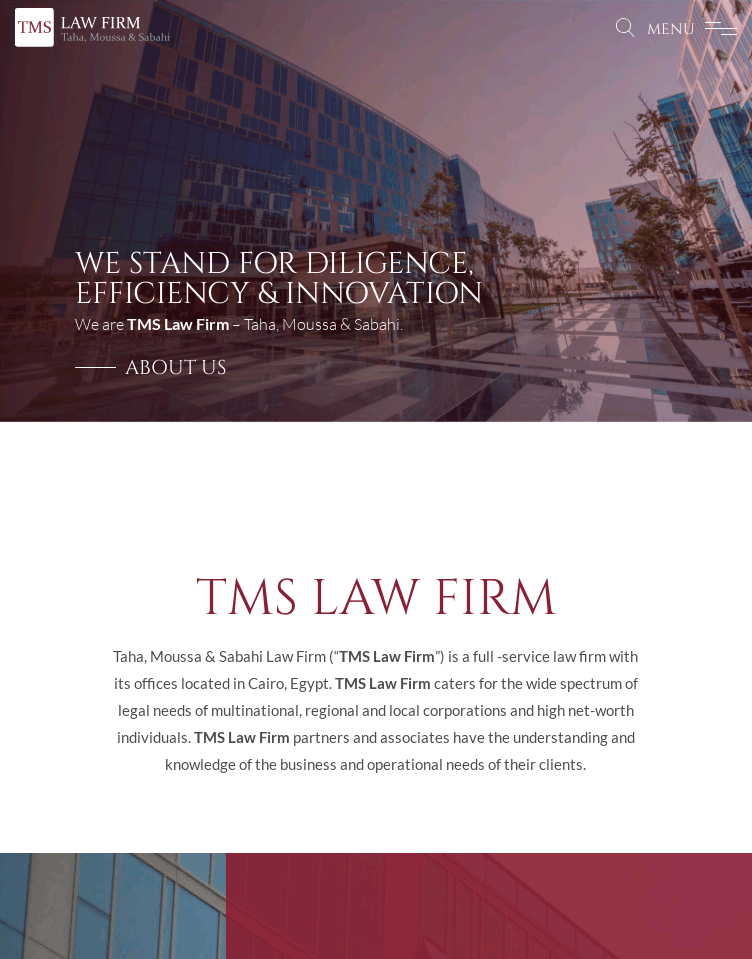 TMS LAW FIRM  Web Design