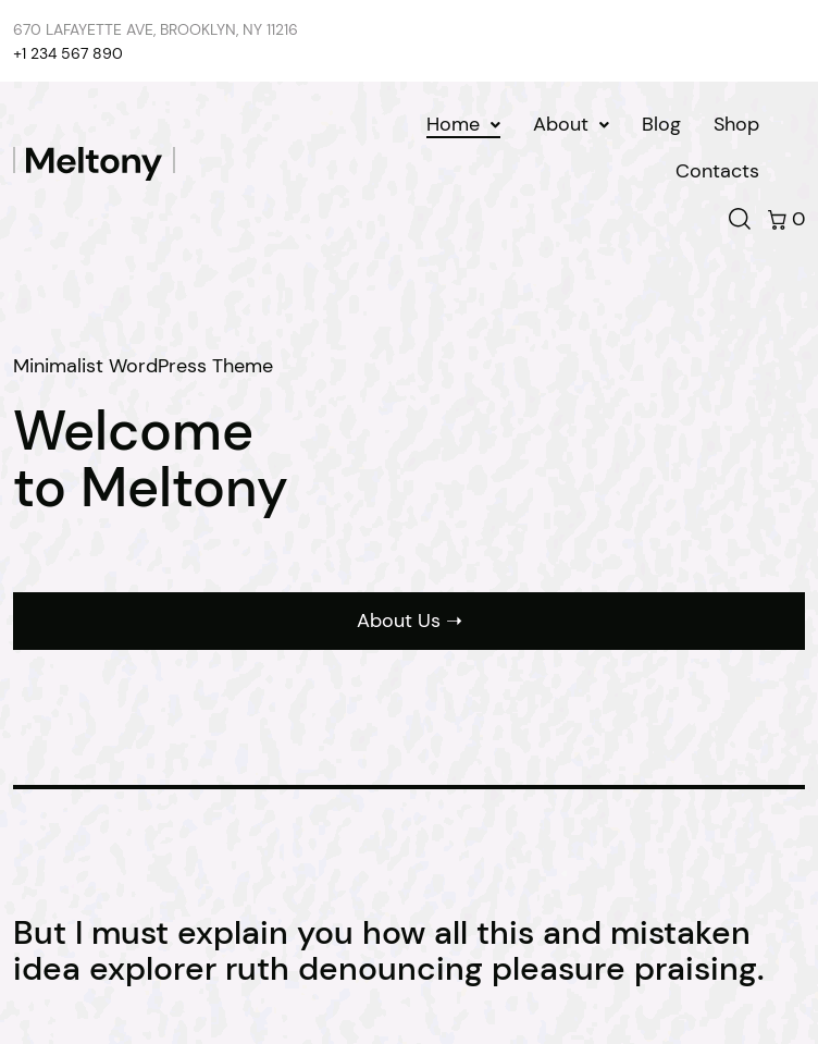 Wordpress Theme - Meltony  Web Design
