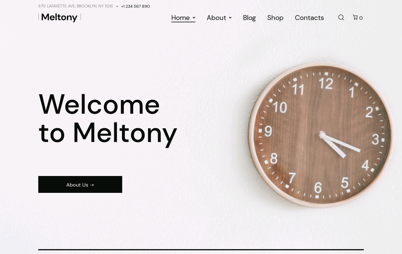 Wordpress Theme - Meltony