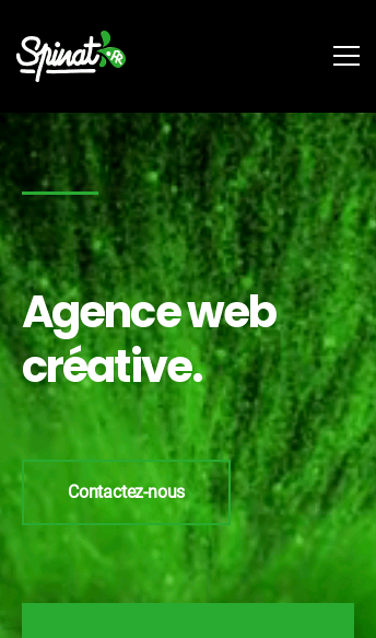 Spinat Digital Agency  Web Design