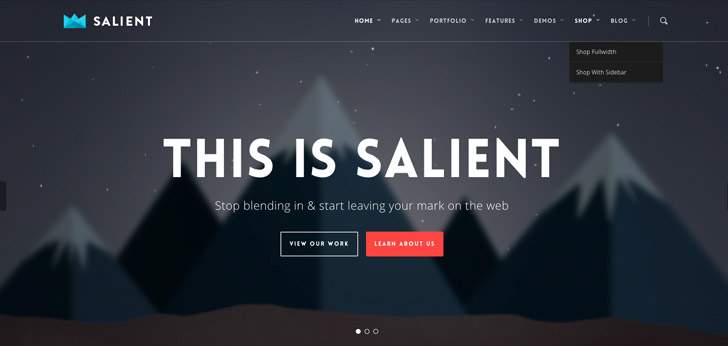 theme salient website has a great web design best web designs